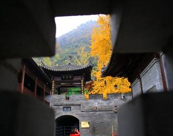 到观音禅寺看秋季最